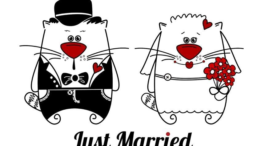 Поздравление с днем годовщины свадьбы прикольные